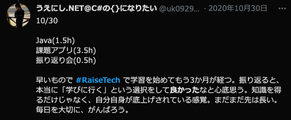 RaiseTech評判